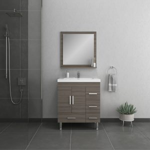 Alya Bath Ripley 30 inch Bathroom Vanity with Drawers, Gray