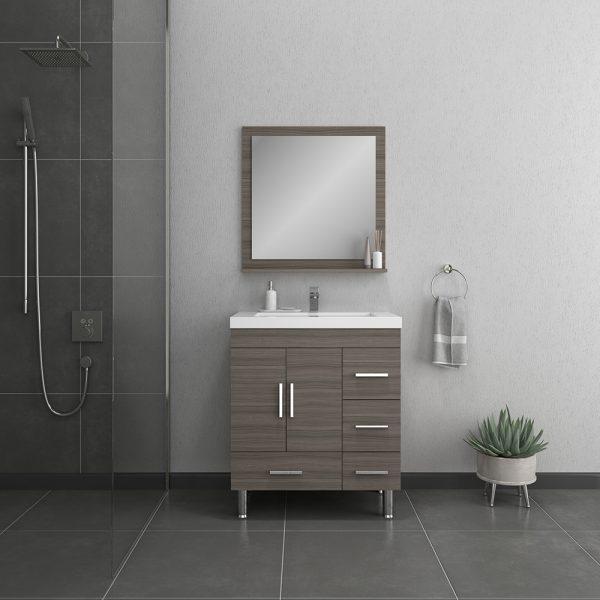 Alya Bath Ripley 30 inch Bathroom Vanity with Drawers, Gray